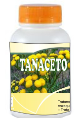 TANACETO*